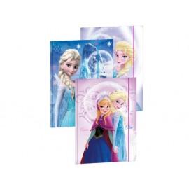 Папка с ластик А4 Frozen